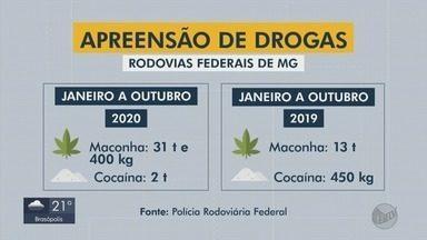 Polícia Rodoviária já apreendeu mais de 6 toneladas de maconha na Fernão Dias em 2020 - Polícia Rodoviária já apreendeu mais de 6 toneladas de maconha na Fernão Dias em 2020