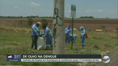 Com a chuva e o calor, cuidados com o Aedes aegypti devem ser redobrados - Veja as informações com a secretária de Saúde de Araraquara.