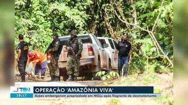 'Operação Amazônia Viva 5' embarga propriedade em Moju após flagrante de desmatamento - Equivalente a 1.200 campos de futebol, a área foi identificada pelos agentes, que também apreenderam 175 metros cúbicos de madeira em tora e motosserras.