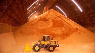 Agroindústria de Goiás foca na produção de farelo de soja - Agricultores anteciparam as vendas da oleaginosa e produto já tem destino certo.