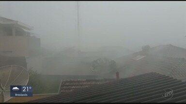 Morador registra chuva forte que causou queda de árvore em Itamogi - Morador registra chuva forte que causou queda de árvore em Itamogi