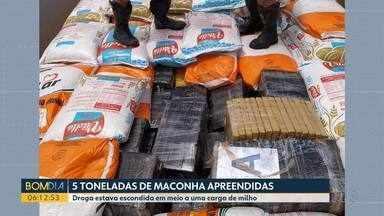 Mais de cinco toneladas de maconha são apreendidas - Droga estava escondida em meio a uma carga de milho.