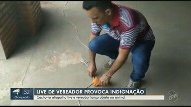 Vereador eleito em Pedreira joga objeto em cachorro durante transmissão em rede social - A live teve como intenção agradecer os votos no último domingo de eleições municipais, mas a atitude do vereador foi mal repercutida entre os eleitores.