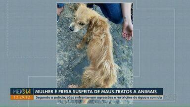 Mulher é presa suspeita de maus-tratos a animais em Ponta Grossa - Segundo a polícia, cães enfrentavam agressões e restrições de água e comida na casa dela.