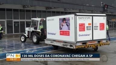 Estado de SP recebe doses da vacina Coronavac - Vacina está em fase de testes e ainda não foi liberada pela Anvisa.