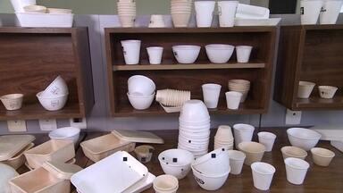 Startup produz copos e embalagens biodegradáveis feitos de mandioca - A tecnologia ajuda a deixar a vida mais sustentável e chama a atenção dos consumidores.