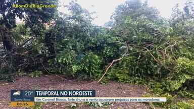 Temporal causa estragos em Coronel Bicaco, no Noroeste do Rio Grande do Sul - Assista ao vídeo.