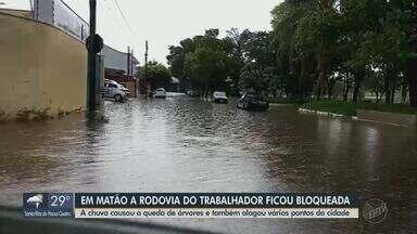 Chuva causa queda de árvore e bloqueia Rodovia do Trabalhador em Matão - Vários pontos da cidades ficaram alagados.