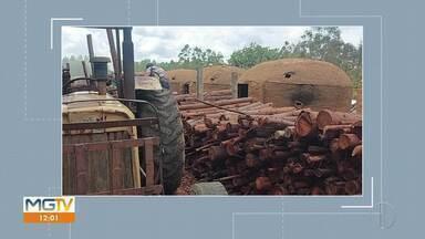 Ibama fecha carvoaria clandestina em Montezuma e aplica multa de R$ 74 mil - Carvoaria funcionava no interior da Reserva de Desenvolvimento Sustentável Nascentes Geraizeiras (RSD) em Montezuma. Área foi embargada e os 37 fornos serão retirados do local.