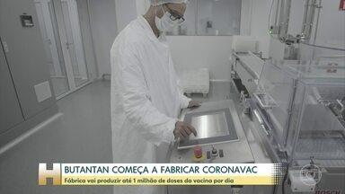 Instituto Butantan começa a fabricar a vacina CoronaVac - Fábrica vai envasar até 1 milhão de doses por dia