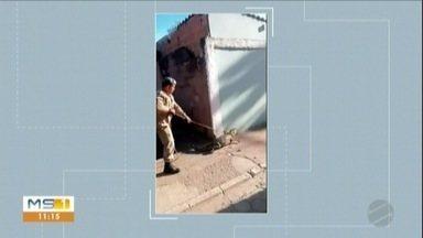 Jacaré é encontrado debaixo de carro em Corumbá - MS1