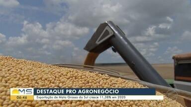 Exportação de Mato Grosso do Sul cresce 11,38% em 2020 - O agronegócio foi o setor que mais contribuiu para esse saldo positivo