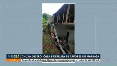 Chuva destrói casa e derruba 16 árvores em Maringá - Segundo o Inmet, foram 47mm de chuva no domingo e ventos de até 53 km/h.