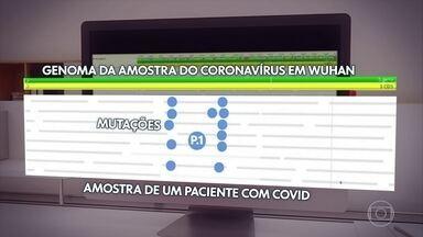 Saiba como é feito o sequenciamento para descobrir variantes da Covid-19 - Foi de um equipamento que saiu a descoberta da nova variante do coronavírus identificada em Manaus, no Amazonas e batizada de P.1. Nos laboratórios, o chamado sequenciador guia os pesquisadores que usam sempre como referência o genoma da primeira amostra do coronavírus encontrada em Wuhan, quando o vírus surgiu na China.