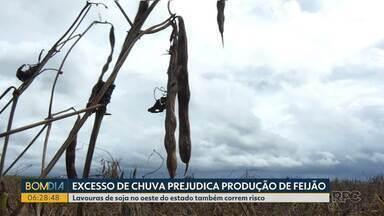 Chuva em excesso traz prejuízos a agricultores da região oeste do Paraná - Eles já esperam perdas nas lavouras de soja e feijão.