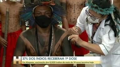 Segundo Ministério da Saúde, 37% dos índios receberam primeira dose da vacina - Alagoas prevê terminar primeira fase de vacinação dos oito mil índios com mais de 18 anos nesta quinta-feira