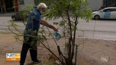 Idoso cuida de plantas e dá exemplo de cidadania em Jaboatão dos Guararapes - Ele rega, diariamente, as plantas que, um dia, a prefeitura levou ao canteiro central da Estrada da Batalha.