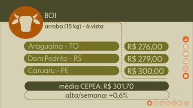 Confira os preços do Boi Gordo - Na sexta feira (6), em Araguaína, Tocantins, a arroba à vista foi negociada por R$ 276,00. Em Dom Pedrito, Rio Grande do Sul, R$ 279,00. Em Caruaru, Pernambuco R$ 300,00. A média CEPEA, com os preços do estado de São Paulo, fechou a semana em R$ 301,70. Alta de 0,6%.