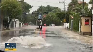 39 árvores caíram na Grande SP - Temporal atingiu várias cidades da região metropolitana.