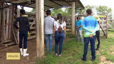 Aulas retornam em escolas agrícolas de Sergipe - Aulas retornam em escolas agrícolas de Sergipe.