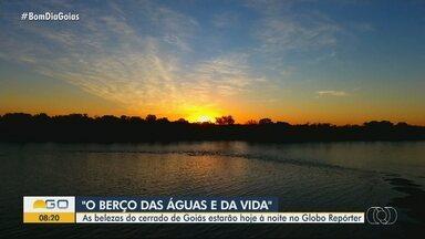Globo Repórter mostra 'berço das águas' em Goiás - Fábio Castro e equipe mostram as belezas do Cerrado nesta edição.