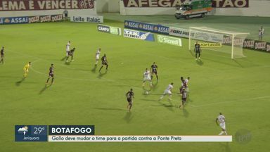 Alexandre Gallo deve mudar time do Botafogo-SP no próximo jogo - Pantera joga contra a Ponte Preta no sábado (13).