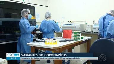Variante P1 do novo coronavírus é encontrada em pelo menos 11 municípios de Sergipe - Variante P1 do novo coronavírus é encontrada em pelo menos 11 municípios de Sergipe