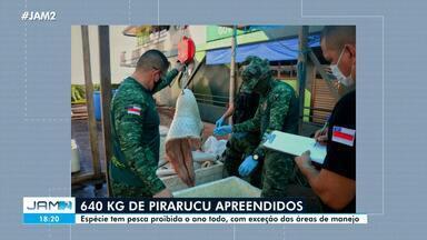 Mais de 600 kg de pirarucu são apreendidos no AM - Espécie tem pesca proibida o ano todo, com exceção das áreas de manejo