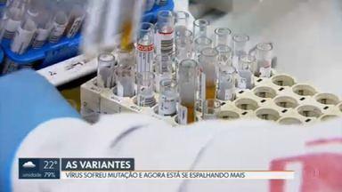 Veja quais são as variantes que circulam hoje no DF e por que são tão perigosas - Secretaria diz que a maior parte do vírus hoje em circulação é referente a mutações.