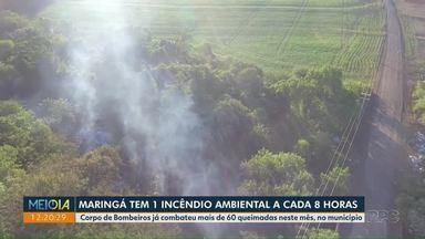 Maringá tem 1 incêndio ambiental a cada 8 horas - São mais de 60 ocorrências em abril, segundo o Corpo de Bombeiros.