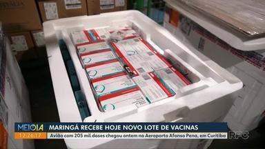 Região de Maringá recebe mais vacinas contra a Covid-19 - Doses chegaram ontem no Estado.