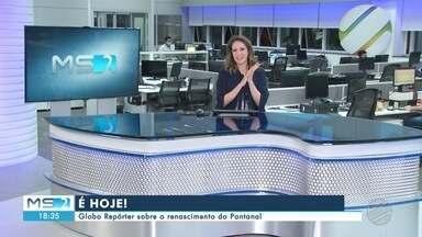 MSTV 2ª Edição Campo Grande - sexta-feira - 30/04/2021 - MSTV 2ª Edição Campo Grande - sexta-feira - 30/04/2021