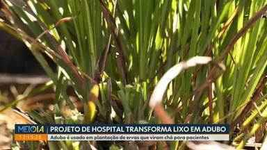 Projeto de hospital transforma lixo em adubo - Adubo é usado em plantação de ervas que viram chá para pacientes.