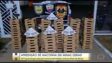 Pouco mais de meia tonelada de maconha é apreendida no interior de Minas Gerais - 537kg da droga estavam numa propriedade rural em Pará de Minas, na região Centro-Oeste de Minas Gerais.