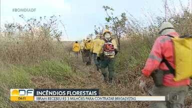 Ibram recebeu R$ 3 milhões do GDF para contratar brigadistas florestais - Serão 145 brigadistas para atuar no período de seca e auxiliar no combate a incêndios em Unidades de Conservação do DF.