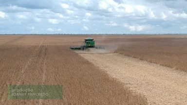 Confira o terceiro episódio sobre a super safra de soja na Bahia - A produção do grão bateu recorde na região oeste do estado em 2021.