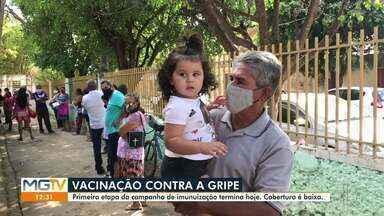 Primeira fase da Campanha Nacional de Vacinação contra a Gripe termina nesta segunda - Crianças e gestantes fazem parte do público da primeira etapa.