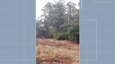 Guarda Municipal flagra invasão a área de proteção ambiental em Itaquaquecetuba - O caso ocorreu neste domingo (16), no bairro Jardim do Ipê.
