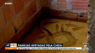Peixes invadem casas durante cheia em Manaus - Famílias acumulam prejuízos.