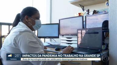 Pandemia aumentou desemprego e inatividade na Grande São Paulo - Crescimento da área de tecnologia pode ser saída para quem busca nova oportunidade