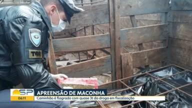 Quase três toneladas de maconha foram aprendidas na Rodovia Castello Branco, em Boituva - Motorista foi preso em flagrante