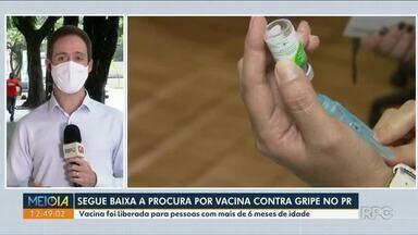 Segue baixa a procura por vacina contra gripe no Paraná - Vacina foi liberada para pessoas com mais de 6 meses de idade.