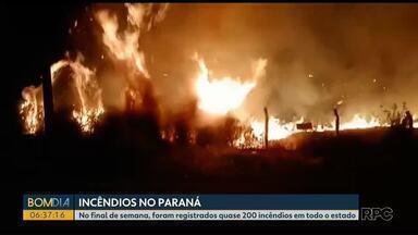 Paraná tem mais de 200 chamados de incêndios no fim de semana - No domingo um incêndio atingiu o Parque Nacional de Ilha Grande, na região noroeste do Paraná