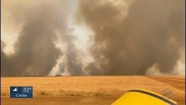 Bombeiros combatem incêndios no cerrado, no Pantanal e numa região da Amazônia - Bombeiros combatem incêndios no cerrado, no Pantanal e numa região da Amazônia mato-grossense
