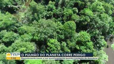 Desmatamento cresce e traz questionamentos quanto à proteção da Amazônia - Confira na reportagem.