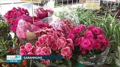 Feira de Flores de Holambra é realizada em Garanhuns - Evento expõe mais de 200 espécies de plantas e flores ornamentais.