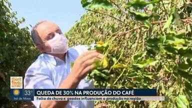 Patrocínio registra queda de 30% na produção do café em 2021 - Falta de chuvas e geadas influenciaram na produção na região do Alto Paranaíba.