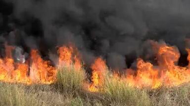 Média de focos de incêndio em Minas em setembro foi 44% superior ao mesmo período de 2020 - Nos primeiros 14 dias de setembro, o Inpe registrou mais de 2,4 mil focos de incêndio em Minas — uma média de 163 por dia. Esse número é 44% maior que no mesmo período de setembro do ano passado.