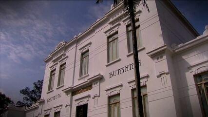 Ministério Público denuncia 11 pessoas por furto de dinheiro da Fundação Butantan