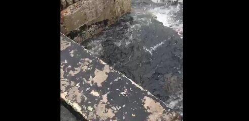 Vídeo mostra novo vazamento de esgoto na Ilha do Frade, em Vitória